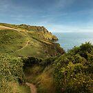 Nare head -  Roseland  - Cornwall by eddiej
