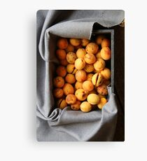 ripe apricots in wooden box Canvas Print