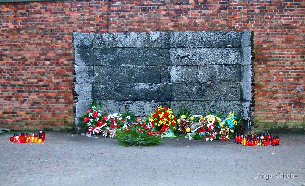 The Killing Wall, Auschwitz by Anya  Cristina