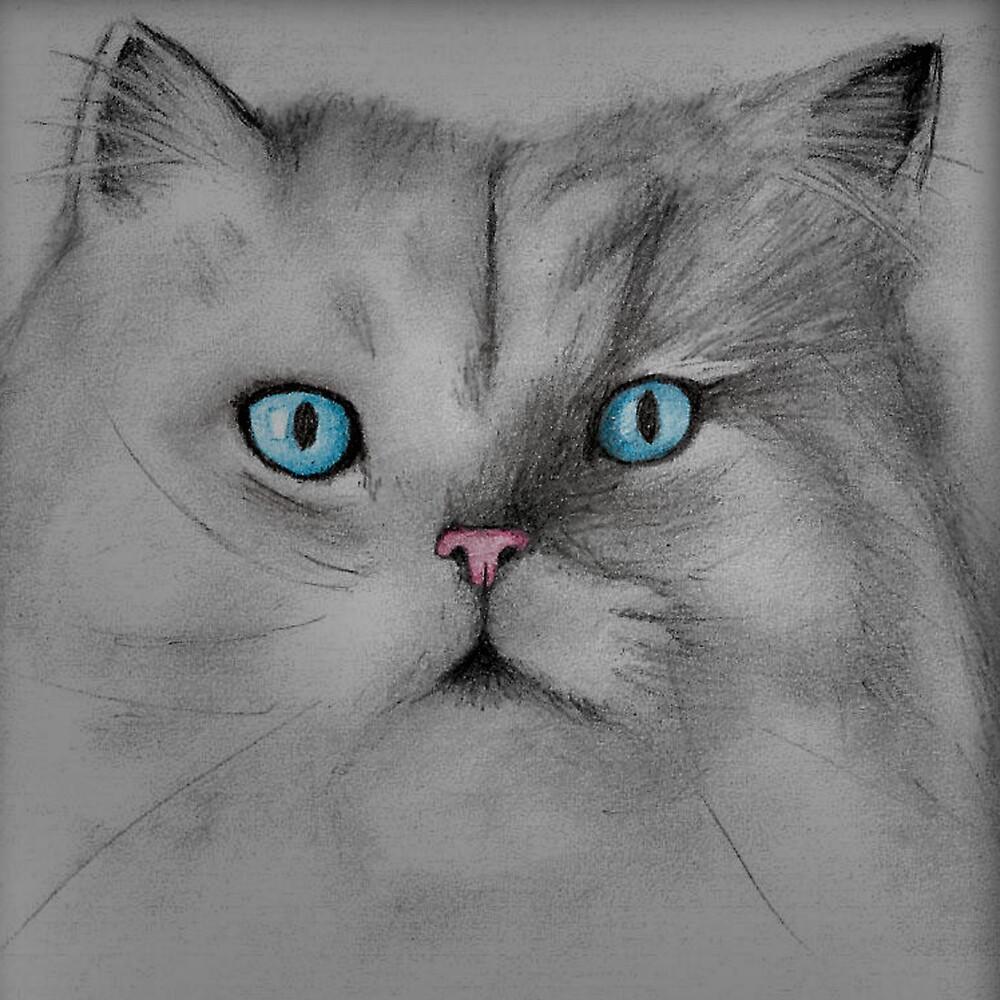 Cat by Juanita Bishop