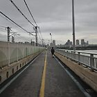 A Walk Along the Bridge in Seoul by Christian Eccleston