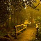 Bridge No 2 by Rosalie Dale