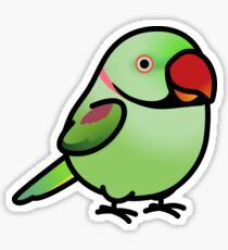 Chubby Alexandrine Parakeet Male Sticker