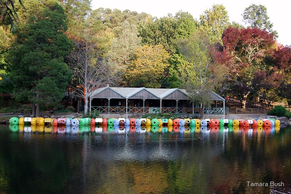 boat house at emerald lake by Tamara Bush
