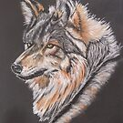 Mexican wolf   (pastel on canvas) by Linda Sparks