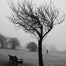 Lone tree Sunny Hill Park by joelmeadows1