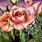 Rose Inspiration by photorolandi