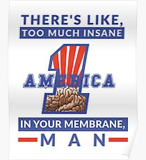America First - Insane In Your Membrane, Trump Poster