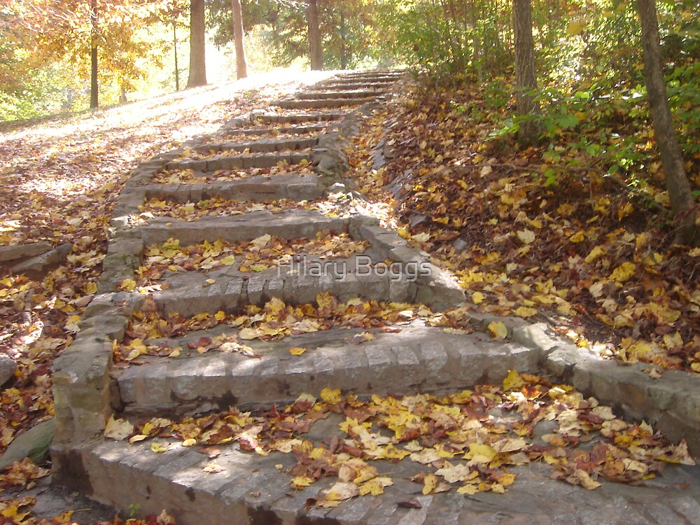 Stairs of Autumn by Hilary Boggs