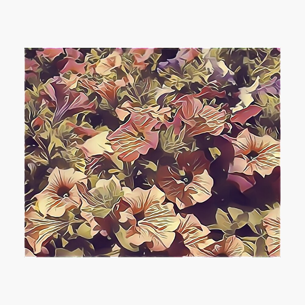 New Flowers, New Hopes Photographic Print