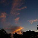 Summer evening by Ana Belaj