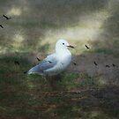 Taking flight by Jan Clarke