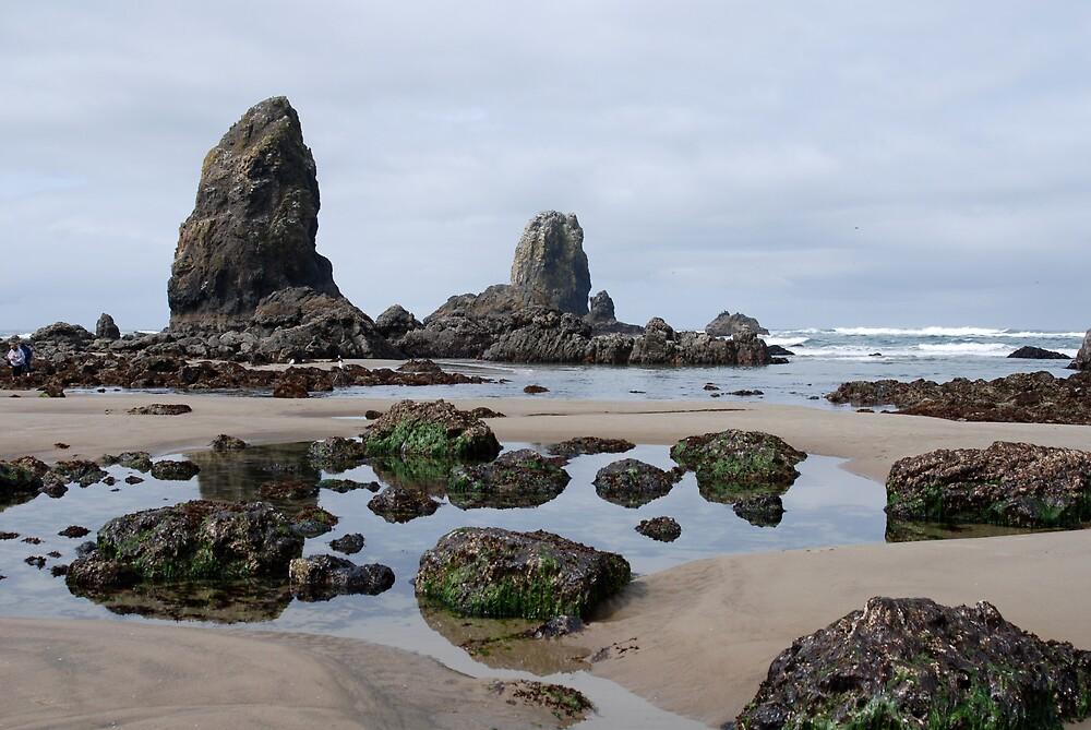 Low Tide Cannon Beach - Oregon by Robert Baker