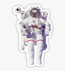 Sloth in space Sticker