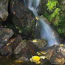 « Petit ruisseau » par Päivi  Valkonen