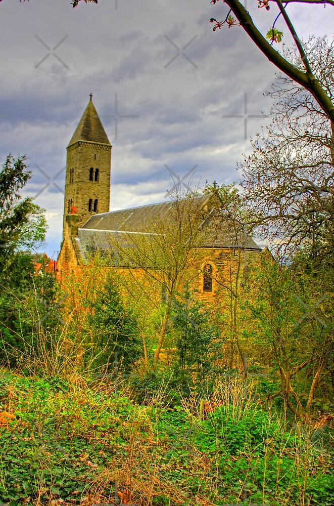 Church in the wild by Tom Gomez