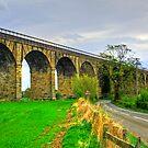 Avon Viaduct II by Tom Gomez