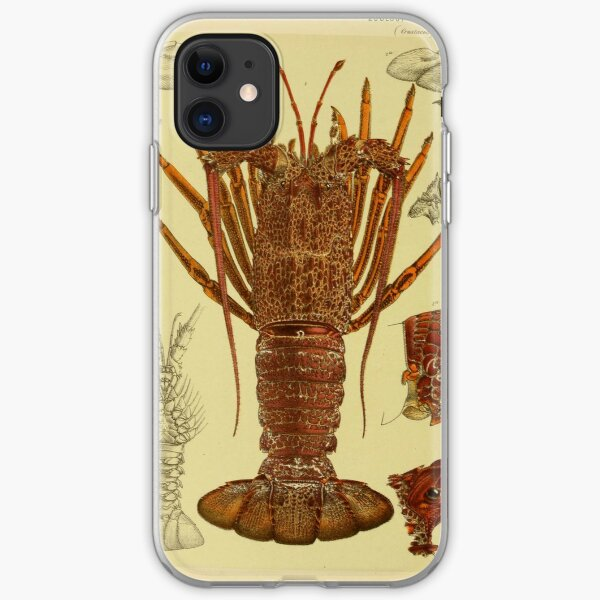 Vintage Lobster Anatomy Diagram (1890) iPhone Soft Case