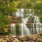 Liffey Falls Magic by Michael Matthews