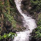 Lower Reid Falls by John  Kapusta
