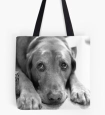 Merry Christmas Copper Tote Bag