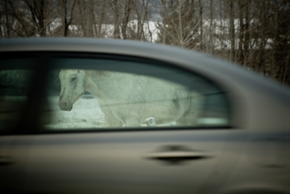 Horse(less) Carriage by Don LaVange