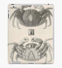 Vintage Crab Anatomy Photograph (1918)  iPad Case/Skin