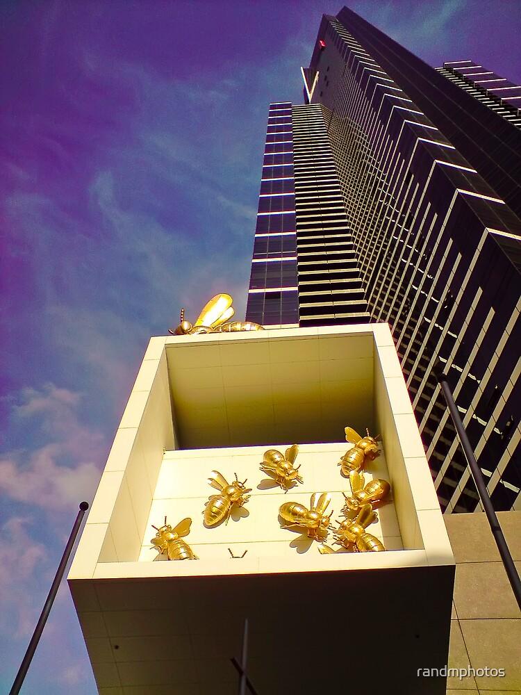 BeeHive by randmphotos