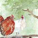 The Chicken Run by Maree Clarkson