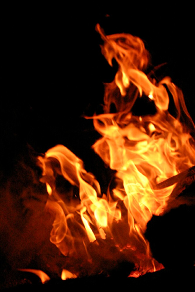 Face of Fire by Texico