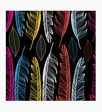 Graphic seamless pattern with colorful feathers Photographic Print