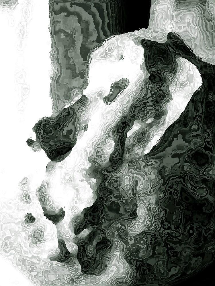 Ape by adambrownstein