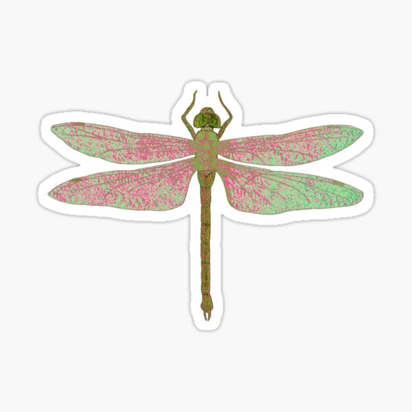 Green and Pink Dragonfly Sticker