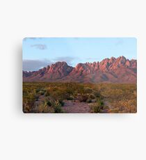 Organ Mountains At Sunset Metal Print