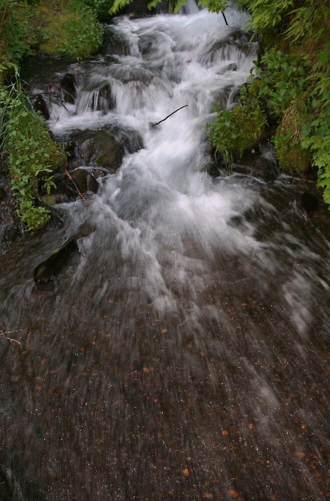 Gorge Falls by heatherranae