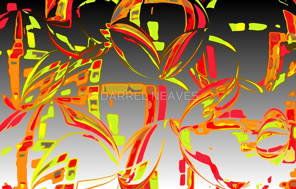 orange squash by DARREL NEAVES