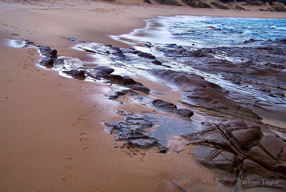 Rocky Foreshore by Rachael Taylor