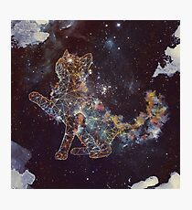Celestial Cat  Photographic Print