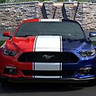 Special Edition 2016 Ford Mustang by TeeMack