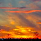 sunset-1 by AlRobinson