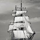Sailing ships by Dominika Aniola