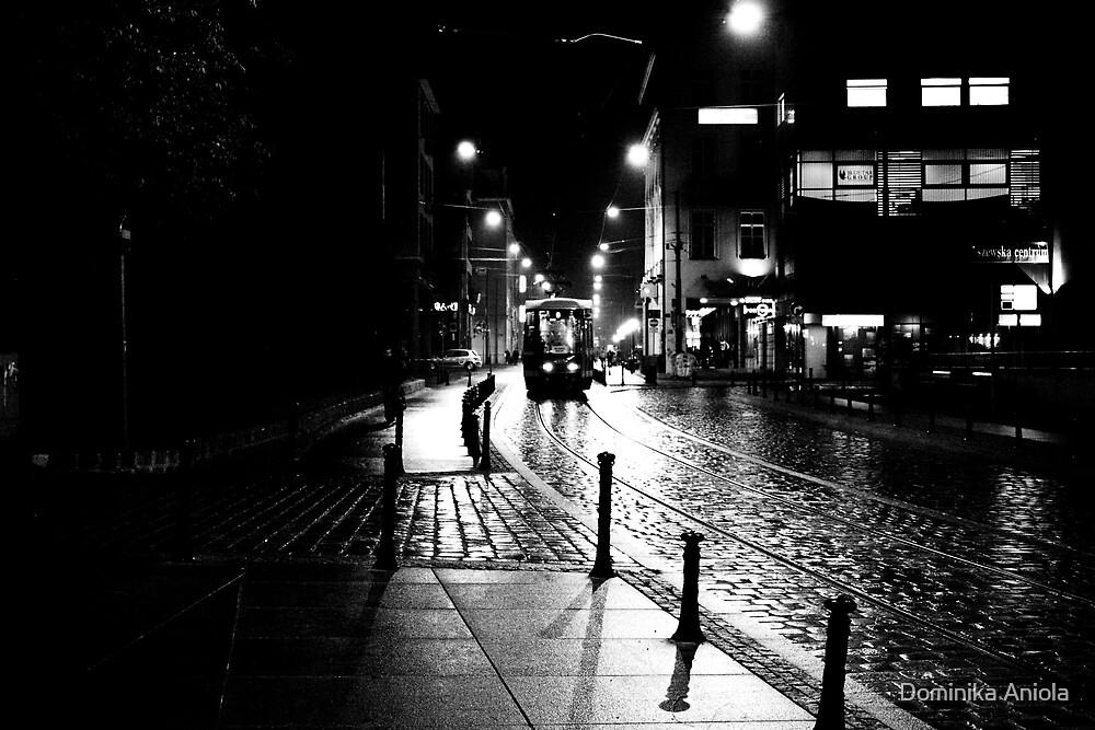 Night train by Dominika Aniola
