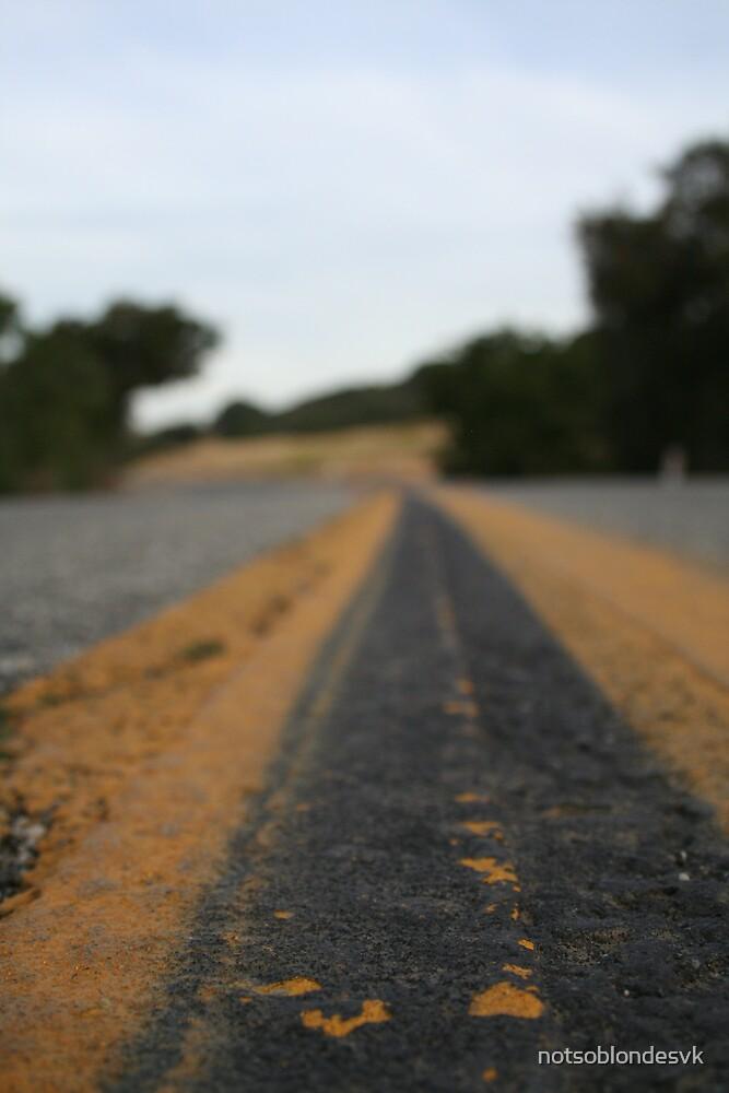Road by notsoblondesvk