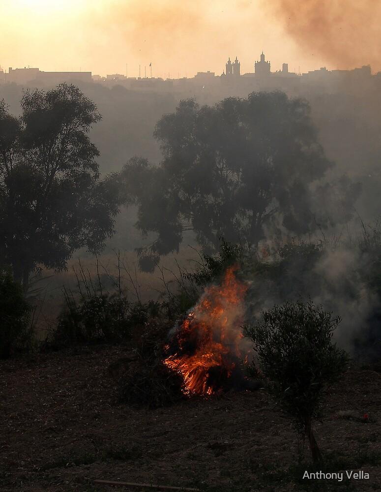 Weed Burning by Anthony Vella