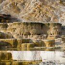 Mammoth hot springs by AlRobinson