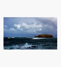 Sheep Island Photographic Print
