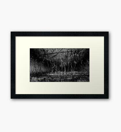 Mokoan Framed Print