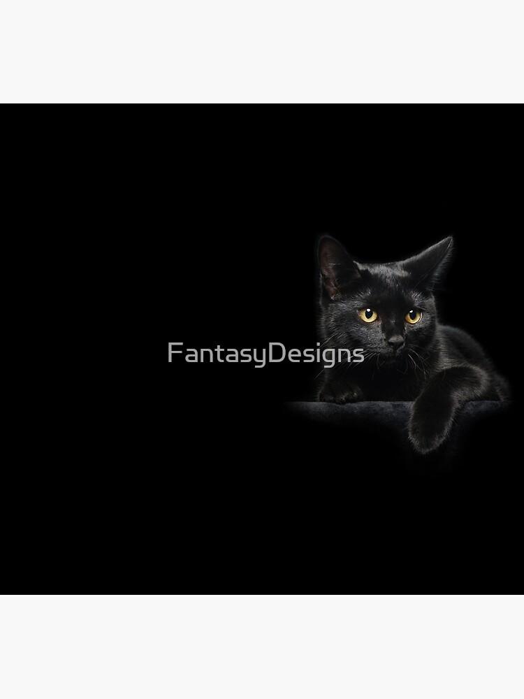 Black Cat by FantasyDesigns