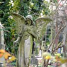 Highgate Cemetary by tarique