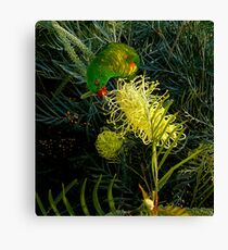SWEET TOOTH ...... ERR ...... BEAK Canvas Print